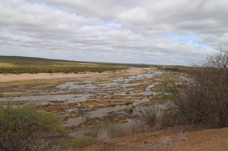 A river in Kruger Park